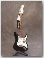 Fender VG Stratocaster, Color