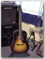 Bourgeois Acoustic Guitars, Slope D Short Scale, Color